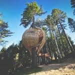 Lista najciekawszych domków na drzewie, o których nie miałeś pojęcia