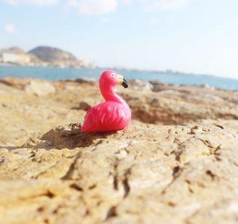 Plan na 5-dniowe wakacje w Alicante